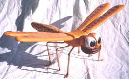 orangedragonfly_2_2